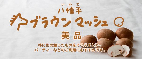 八幡平ブラウンマッシュルーム・美品