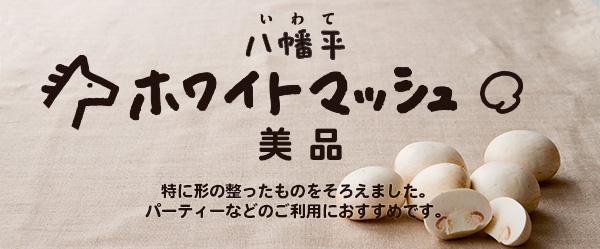 八幡平ホワイトマッシュルーム・美品