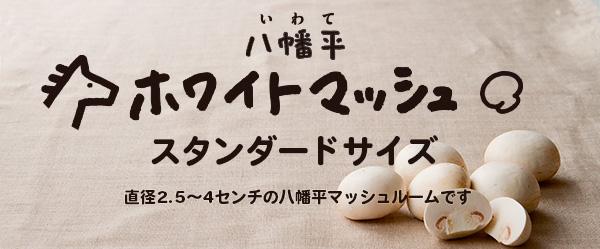 八幡平ホワイトマッシュルーム・無選別規格